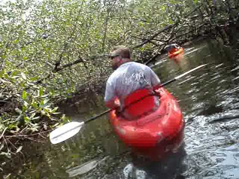 Kayaking the Estero Padre Ramos in Nicaragua
