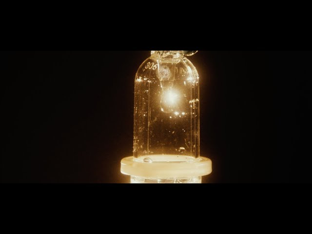 Videoclip de El Petit de Cal Eril - Tot el que has estat