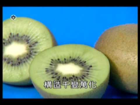 花、果實和種子的形態與功能 - YouTube