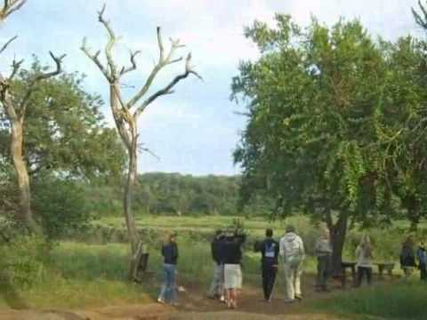 HERITAGE TOURS, Welcome To  Game Reserve HLUHLUWE_mpeg4.avi