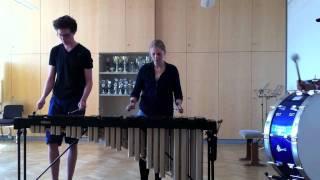 Hello (Martin Solveig & Dragonette (Cover on Marimba))