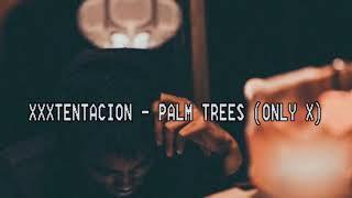 XXXTENTACION - PALM TREES (Lyric Video)