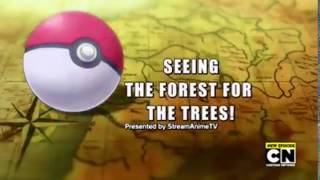 Title Card | Seeing The Forest For The Trees! | Pokémon S19 EP28