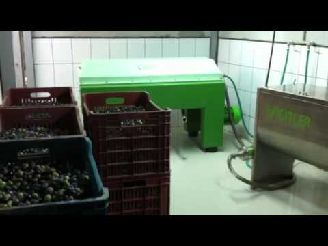 Yiğitler tarım Ev tipi zeytinyağı makinası