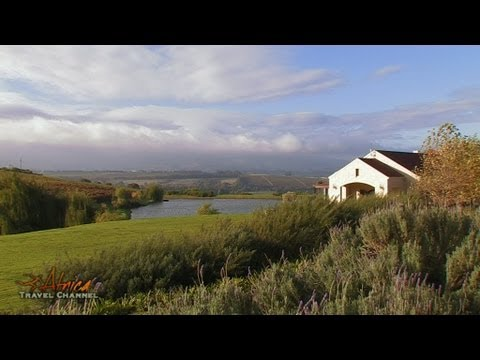 Asara Wine Estate & Hotel Accommodation Stellenbosch South Africa – Africa Travel Channel