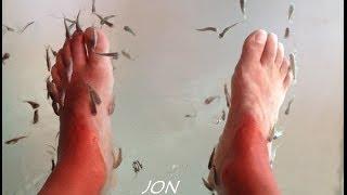 JON FEIXAS FISH