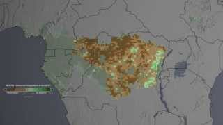 Congo Forest Cover