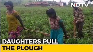 In State That Pioneered 'Beti Bachao', Farmer's Daughters Plough Fields