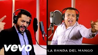 LA BANDA DEL MANGO-EL SON DE LOS COLORADOS (VIDEO OFICIAL) 2016