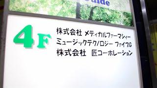 Fat Freddy's Drop Japan Synth