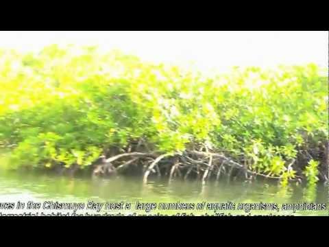 Amapala Honduras: Islas y Bahía de Chismuyo (diariowebcentroamerica.com Cárlenton Dávila)