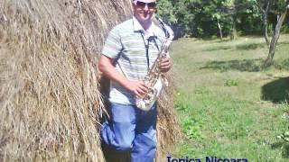 IONICA NICOARA LIVE BRAU(CANICEA)