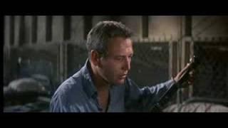 """Scene from """"Cool Hand Luke"""""""