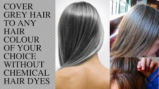 GREY HAIR / Cover your Grey Hair to any Colour (Blonde, Violet, Black, etc.) / Organic & Natural