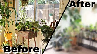 Reorganizing Indoor Plants + House Plant Furniture [PART 1]
