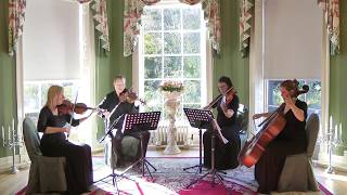 Lady And The Tramp (Bella Notte) Wedding String Quartet