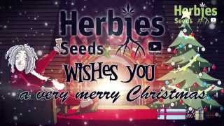 Merry Xmas From Herbie & Friends
