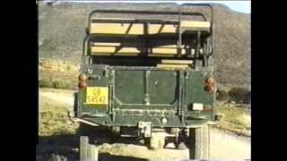 Teletubbies - South African Game Drive