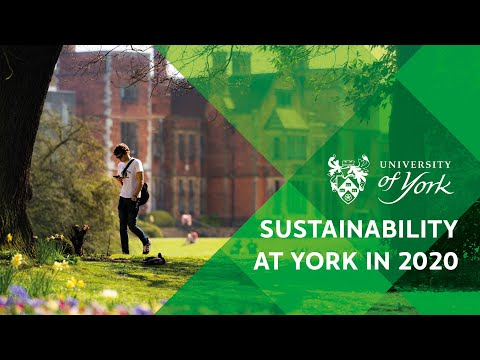 Sustainability at York in 2020
