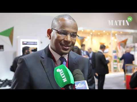 Video : FIAD 2019 : Boubou Cisse, Ministre de l'Economie et des Finances du Mali