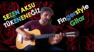 TÜKENECEĞİZ (Sezen Aksu - Fingerstyle klasik gitar)