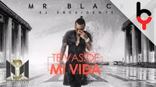 Mr Black - Te Vas De Mi Vida | Audio
