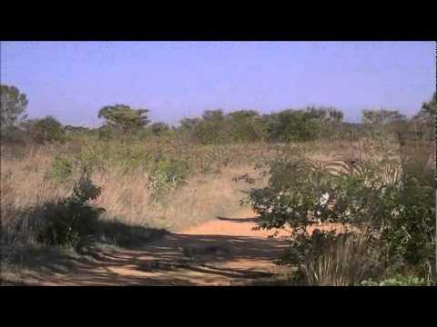 Witwater Safari Lodge