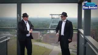 Walking By Myself  - The Fantastic Blues Brothers