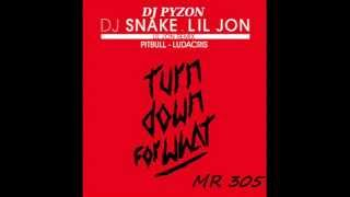 "DJ SNAKE ft LIL JON & PITBULL & LUDACRIS "" Turn Down For What "" ( dj pyzon remix )"