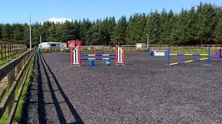 Perfect puzzle jump training 1m