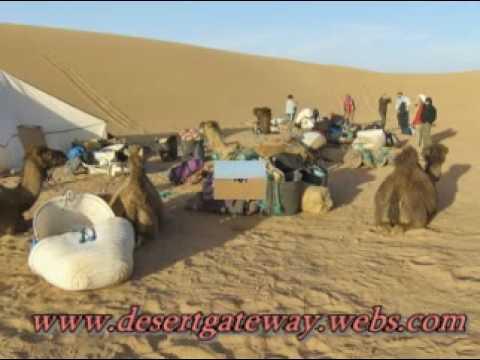 sahara desert zagora,camel trekking ,bivouac,nights in the desert,4×4 tours