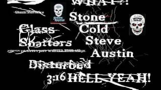 Stone cold wrestlemania 19 theme (live).wmv