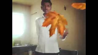Shivaji maharaj song 2016
