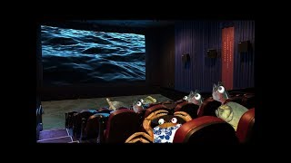 Os Aquamans - A Perseguição (Clipe Oficial)