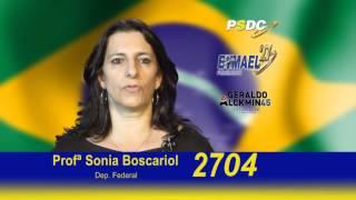 Professora Sonia Boscariol Internet