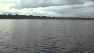lago sapo amazonas