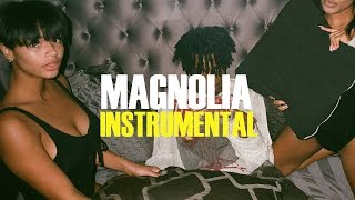 Playboi Carti - Magnolia (Instrumental)