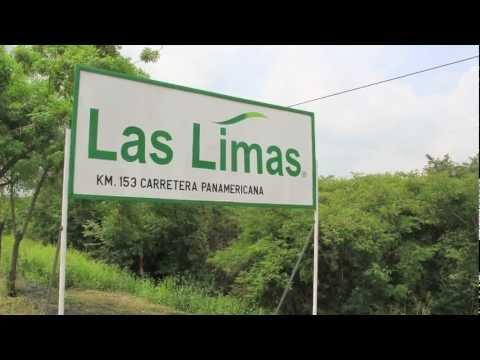 "Ball FloraPlant's ""Las Limas"" in Nicaragua"