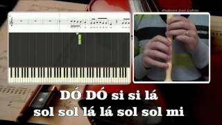 Try Pink COM VOZ GUIA Karaoke das notas para flauta Educação Musical José Galvão