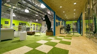 ken block's hoonigan racing division shipping container headquarters