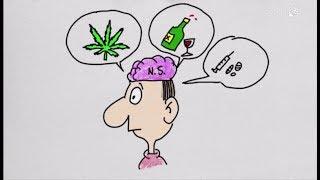 Dapprincipio II - 7. L'influenza di droghe e altre dipendenze sul cervello