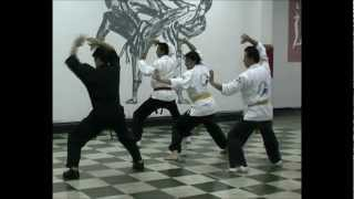 Artes marciales Combinadas 3