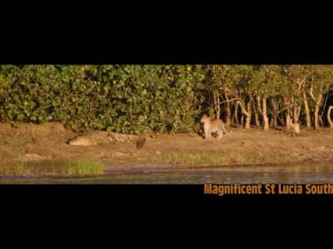 St Lucia Estuary South Africa Accommodation and Safaris
