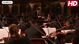 Beethoven Symphony Cycle by Gustavo Dudamel - Best Of