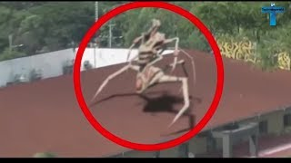 Top 10 Strange & Mysterious Videos That Cannot Be Explained [Top10 Videosworld]