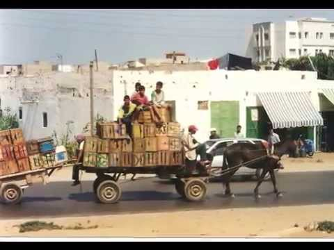 Truck Driving in North Africa.
