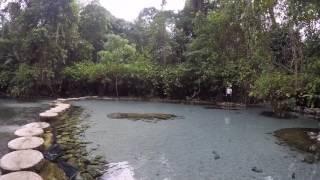 ป่าต้นน้ำ บ้านน้ำราด อ.คีรีรัฐนิคม จ.สุราฎร์ธานี
