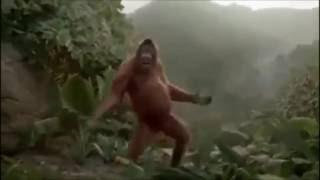 MHD(Fais le mouv) version singe - Tout avec HUMOUR