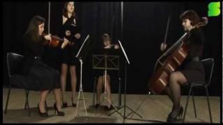 Acasos Musicais- apresentação