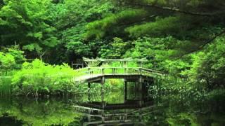 Relaxing music, Musica Rilassante, Zen, SPA, Deep Relax, Meditation Music, deep sleep, Zen Garden by